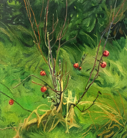 'Apple Tree' by Marianne Muggeridge - Oil on linen, $4500