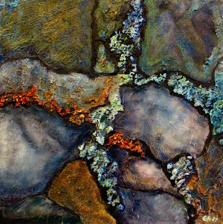 Lichen on Rockface Fiordland by Gaye Atkinson. Mixed Media. $225