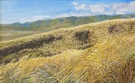 Late Summer over Central Otago by Mary Vinnicombe
